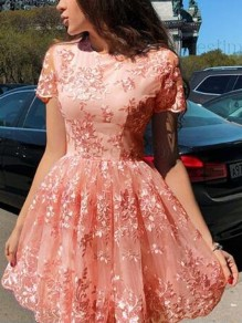 Pink Floral Lace Embroidery Skater Tutu Homecoming Cute Party Mini Dress