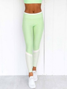 Green Striped Print Elastic Waist High Waisted Yoga Long Legging
