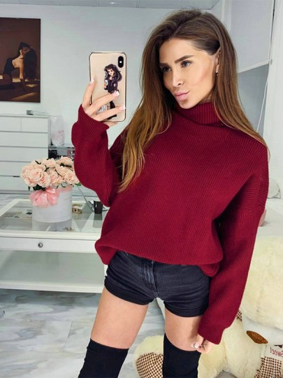 Red Cut Out High Neck Long Sleeve Casual Sweater